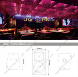 Dw-10 Single 10 Inches 쌍방향 Audio DJ System