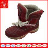 De Laarzen van de Manier van de Sneeuw van vrouwen voor de Winter