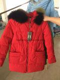 Signora Long Style Down Jackets, rivestimenti di riserva, rivestimenti all'ingrosso