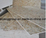 Verpackung Grade OSB From Manufacturer in China