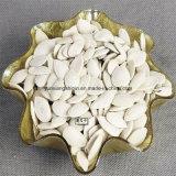 Белые семена тыквы