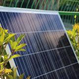 Moge un poli modulo 250-275W del comitato di energia solare del grado in azione