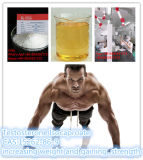 Testosterone Isocaproate Powder Professional Manufacturer Limited-Nebenwirkungen