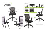 Fornitore di Bifma Test Office Chair