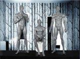 Mannequins pieni della finestra della vetroresina del corpo per la visualizzazione della memoria di modo