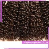 マレーシアの自然な人間の毛髪のアフリカのねじれたカールの織り方