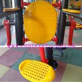 Conseil de balancement de forme physique de parc double d'exercice extérieur extérieur d'équipement (HA-12302)