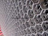 カメのシェルの網