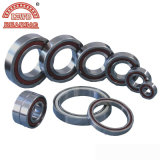 중국 Deep Groove Ball Bearings (6318 2RS)