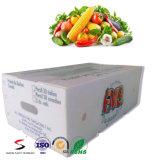 Коробка упаковки Corflute пластичная для использования хлебоуборки