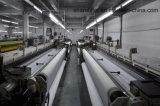Dpp130t-31Wの白い単繊維ポリエステル印刷の網