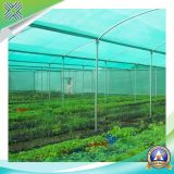 Rete di tasso dello schermo di >90% per il giardino