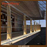 Балюстрада нержавеющей стали и древесины для напольного балкона (SJ-S301)