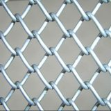 PVC/Galvanized Chain Link Fence (제조자)