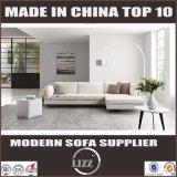 O sofá simples do couro genuíno do estilo do lazer coreano o mais atrasado