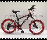 2016 sicher und Stable Mountain Bike/MTB From Hebei Factory
