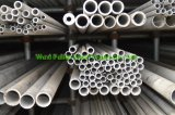 316 Steel inoxidável Seamless Pipe para Exporting