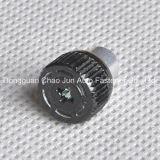 A mola parafusa o zinco do aço de carbono chapeado