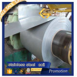 Stainless laminato a freddo Steel Coil (430 201 304 316 304L 316L)