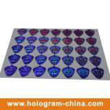 Zilverachtig Veiligheid Anti-Fake 3D Laser Hologram Label