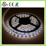 LED, DC12V, tira flexible impermeable