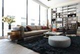 Neue Art-Wohnzimmer-Ausgangsmöbel (HF-4)