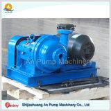 Adt Serie Fgd Rauchgas-Entschwefelung-Schlamm-Pumpe