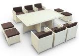 خارجيّة أثاث لازم بيع بالجملة [رتّن] [دين تبل] & كرسي تثبيت مجموعة