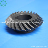 Hot Sell CNC Machined Nylon Plastic Worm Gear