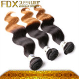 化学Bodywaveのバージンの毛の中国の最もよいOmbreの人間の毛髪無し
