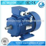 Alta Eficiencia asíncrono Motor eléctrico para el conductor con el CE (IE2-90S-2)