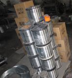 Steel di acciaio inossidabile Wire 0.45mm per Weaving Filter Mesh