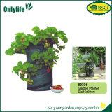 Onlylife heiße Verkäufe kundenspezifischer Garten-Pflanzer