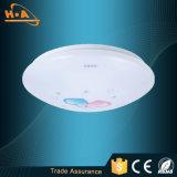 부엌을%s 조정가능한 디자인 Roundness LED 천장 점화