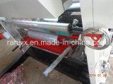 Máquina de impressão de alumínio do Rotogravure com 2 cores 800mm