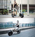 """2016 o """"trotinette"""" novo o mais quente da mobilidade da roda do estilo dois de Harley para adultos"""