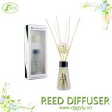 Rattan Stick DiffuserのためのRaffia TiedのサイズCustomer Offer Natural Reed Stick