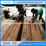 Machines de travail du bois élevées de Frquency avec le GV