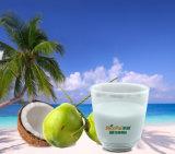 Pó imediato da fruta do coco