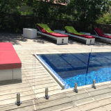 Spectre d'escrime de piscine en verre en acier inoxydable 304/316 (HR1300V-2)