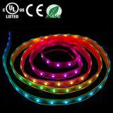 방수 RGB LED 지구 빛
