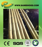 Gerollte natürliche Bambuspolen trocknen
