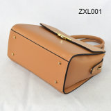 Zippered-Aileron de Zexin avec le sac à main décoratif Zxl001 de Crossbody de mode d'unité centrale de Wardware