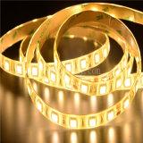 Flexibles LED Streifen-Licht der gelben Farben-(LM5050-WN30-Y)