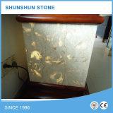 Shell-Riff-beige Marmorplatten (Qualität, guter Verkauf)