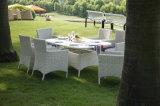 Mobiliário de Jardim Rattan Wicker Set Dining Classical Ambiental