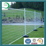 Fence Panelのための2X2 Galvanized Welded Wire Mesh