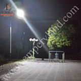 Street Light (DZS-06-30W)를 위한 6m 30W LED Solar Light