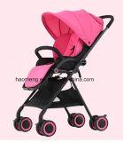 AluminiumAlloy Baby Spaziergänger mit EVA Wheel