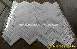 Luxuxentwurfs-Shell und Marmor-Mosaik-Muster-Mosaik-Fliese